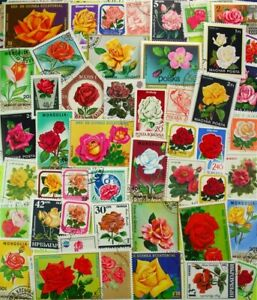 ROSES, (FLOWERS), on stamps, beautiful collection, 100 different stamps (Lot#DP)