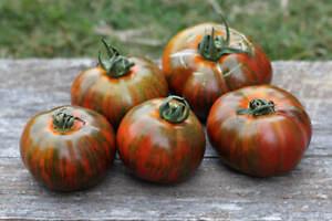 Chocolate Stripes Tomato, 30 Seeds, NON-GMO, BUY 2 GET 1 FREE, FREE SHIPPING