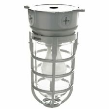 Explosion Proof Style Ceiling Mount Cage Retro Industry Light Fixture Commercial