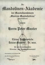 Ehren Doktorwürde Mandoline Musik Zupfinstrumente Urkunde Diplom Ehrendoktor