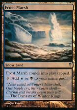 Frost Marsh FOIL | EX | Coldsnap | Magic MTG