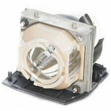 REPLACEMENT LAMP & HOUSING FOR DELL 725-10028