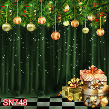 Christmas 10'x10' Computer-painted Scenic Photo Background Backdrop SN748B881