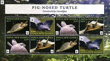 Papua New Guinea 2016 MNH Pig Nosed Turtle WWF 8v M/S Turtles Reptiles Stamps
