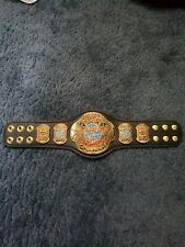 WWE ECW WORLD HEAVYWEIGHT CHAMPIONSHIP MINI REPLICA TITLE Signed by CM PUNK