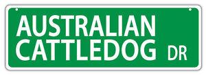 Plastic Street Signs: AUSTRALIAN CATTLEDOG DRIVE (CATTLE DOG) | Dogs