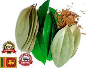 Organic Ceylon Cinnamon Leaves Sun Dried Herbal Fresh Natural free shipping 50g
