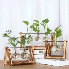Glass Planter Bulb Vase with Retro Wooden Stand and Metal Swivel Holder A5