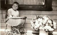 c.1915 Young Boy Sitting in Antique Baby Doll Carriage Vintage Photo