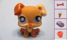 Littlest pet shop Brown Baby Boxer 760 Snowflake Puppy Dog + FREE Access Authen