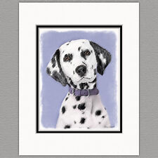 Dalmatian Dog Original Art Print 8x10 Matted to 11x14