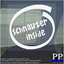 1 x Schnauzer all'interno-Finestra, Auto, Furgone, STICKER, SEGNO, Adesivo, Cane, Pet, a bordo,