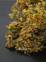St John's Wort - Hypericum Perforatum Organic Dried Tea Herb,Quality Guaranteed!