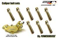 Honda CBR 900 RR T V 918 Fireblade Stainless joint bolt set-front brake calipers