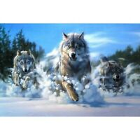 5D Wolf Animals Diamond Painting Kits Full Drill Art Embroidery Decors DIY Gifts