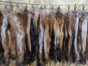 Echte Natur Rotfuchs Anhänger Fuchs Pfote Kralle Fuchspfote mit Karabiner