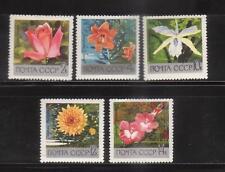 RUSSIA 1969 sc 3596-3600 FLOWERS      MNH  # 697