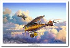 Roland D.Vib by Mark Karvon - WWI - Aviation Art Print - Emil Schape of Jasta 33