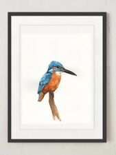 Kingfisher Original Watercolour painting, Limited Edition A5 Wildlife Print