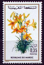 Yt N° 718  MAROC MOROCCO Fleur - Flore marocaine Neuf ** TTB