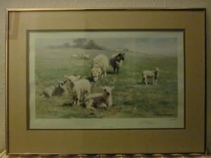 David Shepherd Signed Limited Edition Lithographic Print.Country Cousins 161/850
