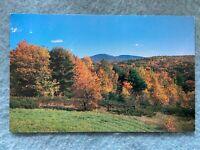 Autumn Gold, Gilford, New Hampshire Vintage Postcard