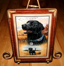 Best of Breed LARRY CHANDLER Black Labrador Dog Lab Puppy Franklin Mint Plate