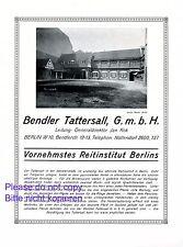 Reitschule Bendler Tattersall Berlin XL Reklame 1925 Kok Atelier Binder Pferde +