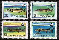 ROMANIA 1994 WORLD WILDLIFE FUND - ENDANGERED FISH SET MINT COMPLETE!