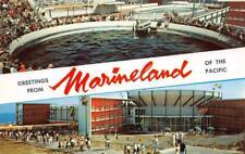 MARINELAND Palos Verdes, CA Oceanarium Porpoise Tank Stadium ca 1960s Postcard
