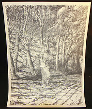 Withering Oversized Print - 1975 Signed by Barry Windsor-Smith
