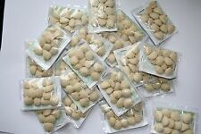 50 PACKS (600) Nuez de la India,GARANTIZADA, indian nut seed weight loss