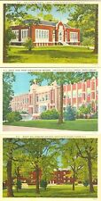 Hickory NC Lenoir College, Collector's Set of Three