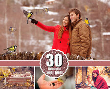 30 different small birds clip art, clipart, scrapbooking, photoshop overlays,