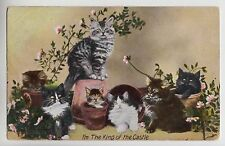"POSTCARD - cats kittens in flower pots ""I'm the King of the Castle"""