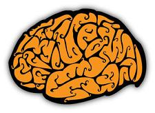 "Brain Illustration Car Bumper Sticker Decal 5"" x 4"""