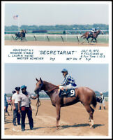 SECRETARIAT GREAT 8X10 MAIDEN WIN COLLAGE FROM 1972 - HORSE RACING PHOTO!