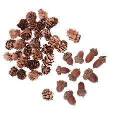 40Pcs Mini Pine Cones Acorns Dried Floral Accents Christmas Decor Ornaments