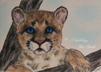 ACEO Mountain Lion Cougar Cub Cat Animal Original Artwork Art Card Signed Gift