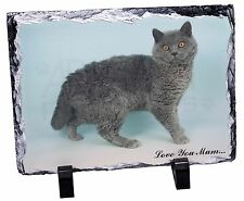 Selkirk Rex Cat 'Love You Mum' Photo Slate Christmas Gift Ornament, AC-110lymSL