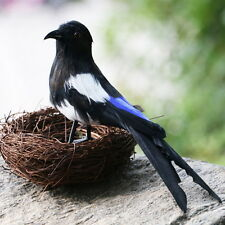 Fake Artificial Magpie Bird Realistic Taxidermy Natural Decor Toy Gift 30cm