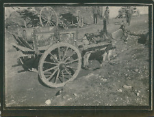 Italie, Naples, Âne tirant une charrette, ca.1900, Vintage silver print Vintage