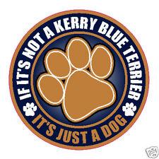 """Not A Kerry Blue Terrier Just A Dog 5"""" Sticker"""