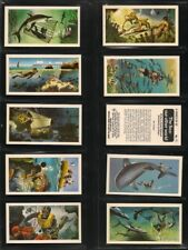 Brooke Bond, THE SEA - OUR OTHER WORLD, Full Set of 50/50 Cards, VG/EX, 1974