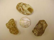 Agate, Snakeskin Crystal Healing Tumblestone - Transformation, Kundalini.
