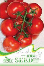 1 Bag 20 Seed String Tomato Garden Vegetable SEED C071