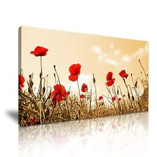 Red Poppy Flower Canvas Wall Art Picture Print 60x30cm