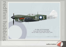 Warhead Illustrated P-40N Kittyhawk 80 Sq RAAF Thumper Aircraft Print