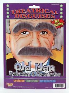 Old Man Einstein Grey Gray Fake Eyebrows Moustache Mustache Facial Hair Costume