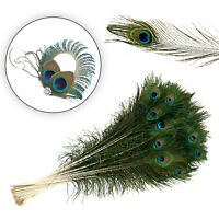 Large 10/100pcs Natural Peacock Feathers with Eyes 70-80cm Decoration DIY Home